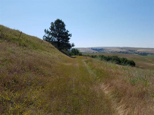 Land For Sale In Missoula : Missoula : Montana