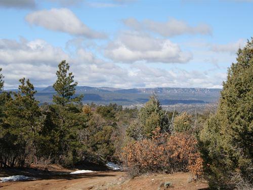 Rocky Mt & Valley Views/North : Chama : Rio Arriba County : New Mexico