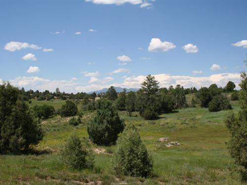 Prime Acreage Northern NM Mountains : Chama : Rio Arriba County : New Mexico