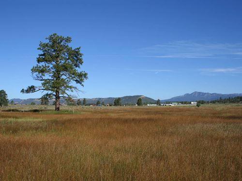 Land Chama NM River Access Level : Chama : Rio Arriba County : New Mexico