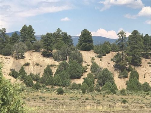 Land Great Building Sites West : Chama : Rio Arriba County : New Mexico