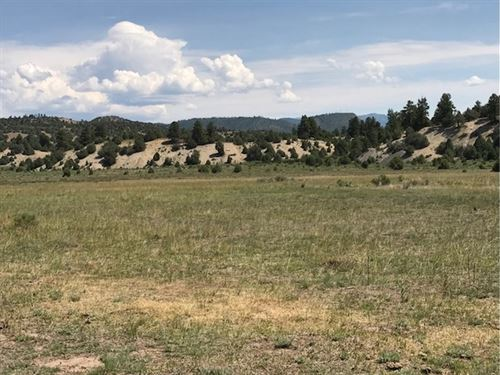 Land West Chama Nm, Great Views : Chama : Rio Arriba County : New Mexico