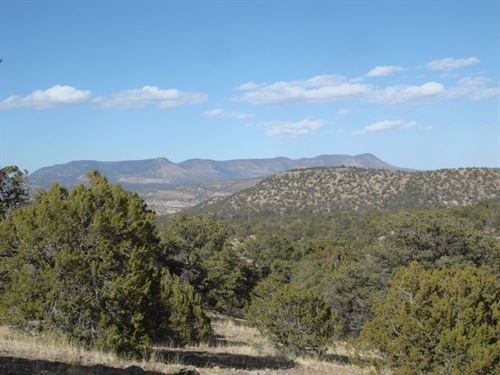 Southwest New Mexico Lot Priced : Datil : Catron County : New Mexico