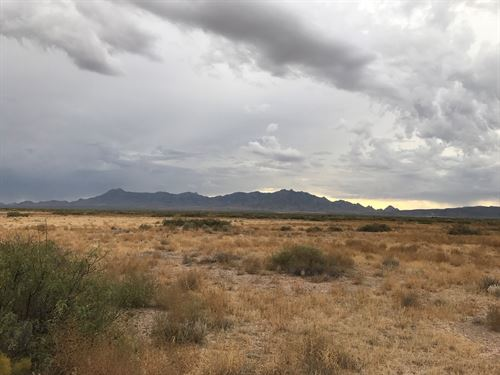 Enjoy All That SW New Mexico Land : Deming : Luna County : New Mexico