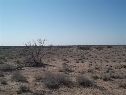 1/2 Acre Deming NM SE Side Florida : Deming : Luna County : New Mexico