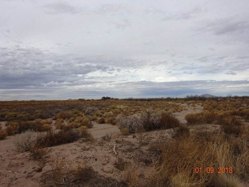 Southwest Desert, Open Skies, Four : Deming : Luna County : New Mexico