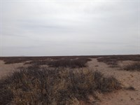 Southeast Desert Land For Sale : Deming : Luna County : New Mexico