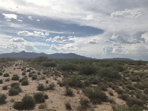 Land in Deming Nm, Luna County : Deming : Luna County : New Mexico