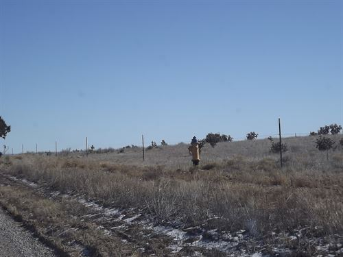 Country Homesite Water Available : Edgewood : Santa Fe County : New Mexico