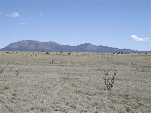 114 Acres Grassland Edgewood New : Edgewood : Santa Fe County : New Mexico