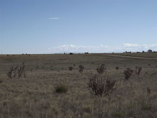 16.59 Acres Heart Edgewood New : Edgewood : Santa Fe County : New Mexico