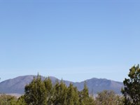 Edgewood NM Residential Wooded Lot : Edgewood : Santa Fe County : New Mexico