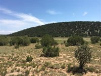 Central NM Vacant Land Edgewood : Edgewood : Torrance County : New Mexico