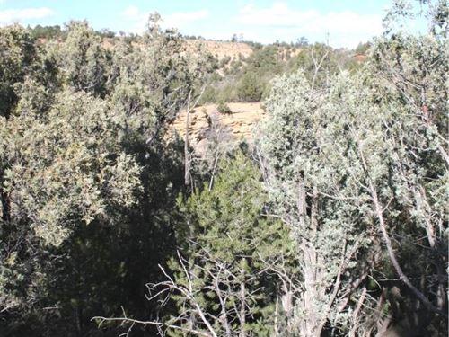 Land El Vado Lake Mountain : El Vado : Rio Arriba County : New Mexico