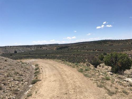 Land Northern NM El Vado Lake : El Vado : Rio Arriba County : New Mexico