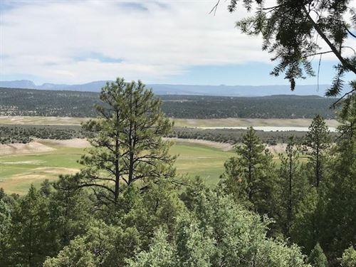 Lot El Vado Lake Northern NM Great : El Vado : Rio Arriba County : New Mexico