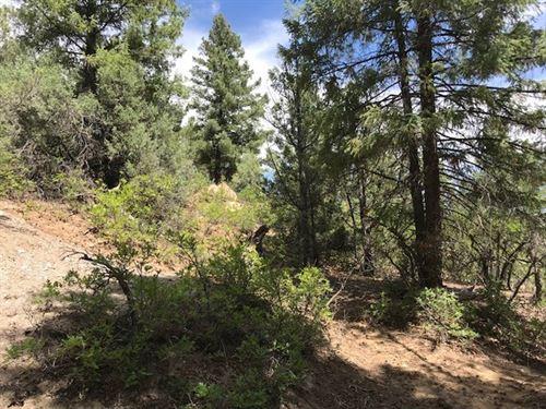 Acres el Vado Lake Northern NM : El Vado : Rio Arriba County : New Mexico