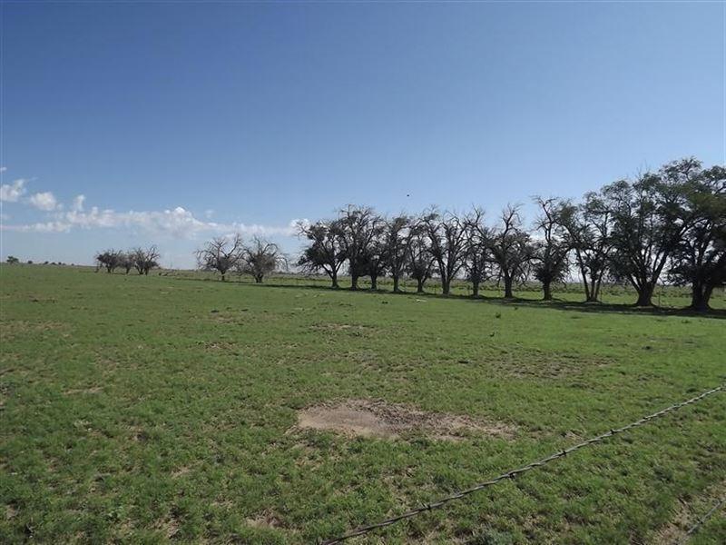 New Mexico Farm Water Rights : Estancia : Torrance County : New Mexico
