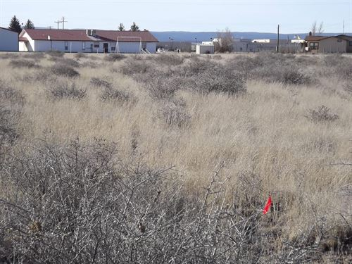 2.2 Acre Home Sites Estancia, New : Estancia : Torrance County : New Mexico