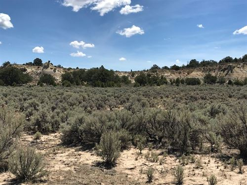 Land Great Hunting Area Weekend : Lindrith : Rio Arriba County : New Mexico
