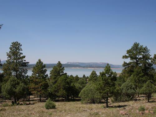 Amazing Lot Looking Over Heron Lake : Los Ojos : Rio Arriba County : New Mexico