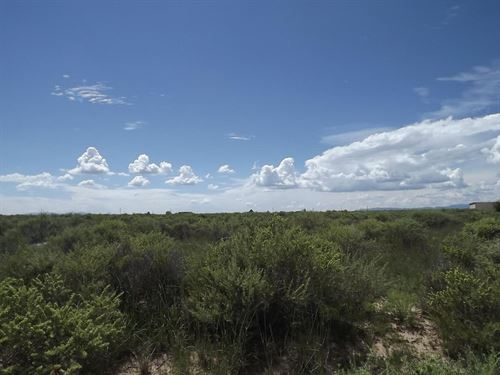 Vacant Land 2.39 Acres South : McIntosh : Torrance County : New Mexico