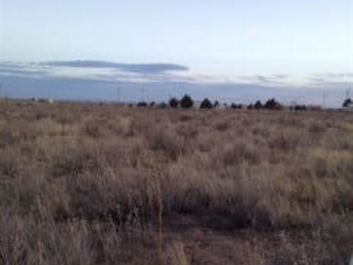Rural Homesite Moriarty New Mexico : Moriarty : Torrance County : New Mexico
