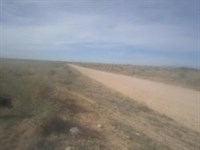 4.81 Acre Country Home Site : Moriarty : Torrance County : New Mexico