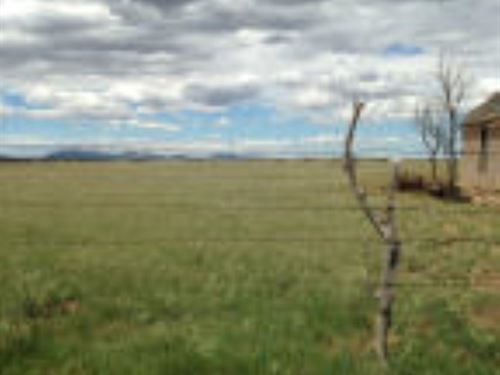 Central NM 160 Ac Grazing Land : Moriarty : Torrance County : New Mexico