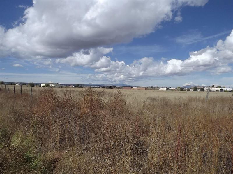 2+ Ac Building Lot Moriarty New : Moriarty : Torrance County : New Mexico