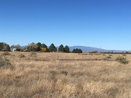 Vacant Residential Lot Torrance : Moriarty : Torrance County : New Mexico