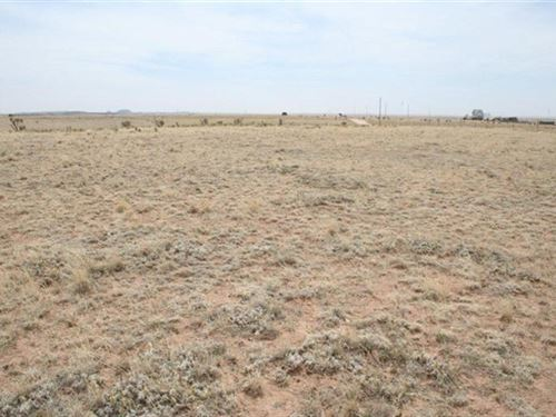 Residential Lot Moriarty NM : Moriarty : Torrance County : New Mexico