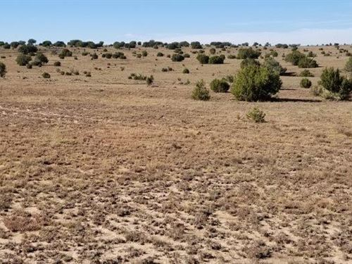 Moriarty NM Vacant Land Land : Moriarty : Torrance County : New Mexico