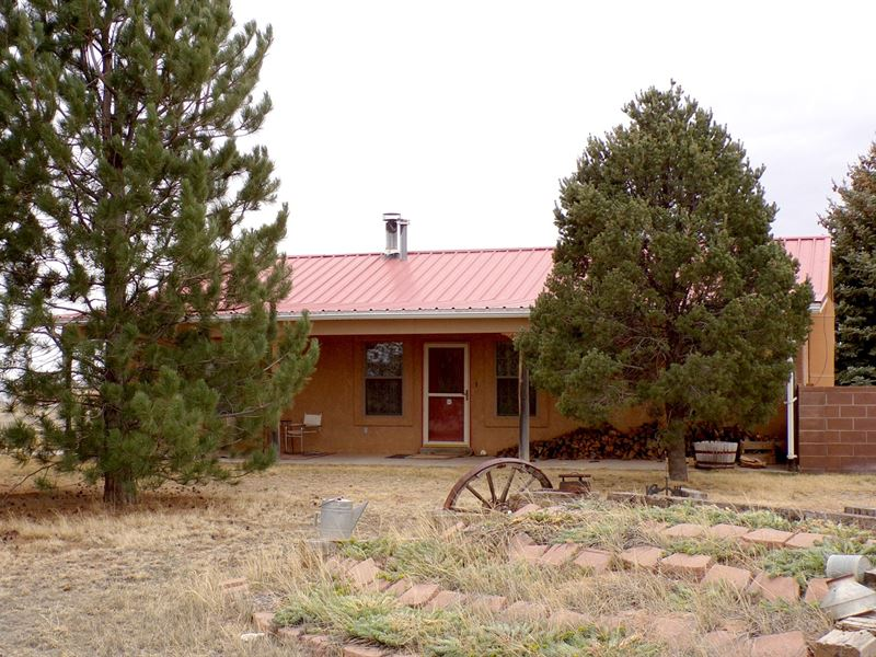Country Home Horse Property 5 Acres : Moriarty : Torrance County : New Mexico