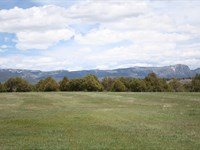 10 Acres Prime Irrigated Land Views : Rutheron : Rio Arriba County : New Mexico