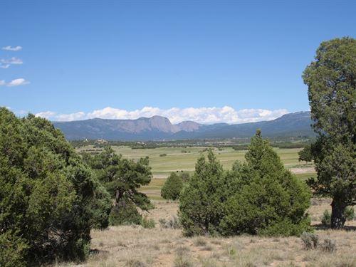 Land Chama Minutes From Heron Lake : Rutheron : Rio Arriba County : New Mexico