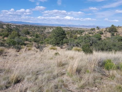 Silver City, NM Land For Sale : Silver City : Grant County : New Mexico