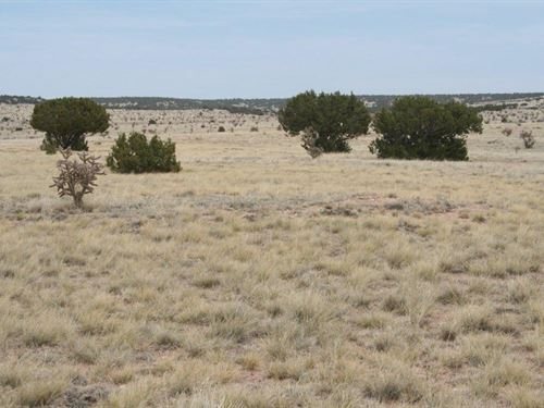 40 Acres Near Stanley New Mexico : Stanley : Santa Fe County : New Mexico