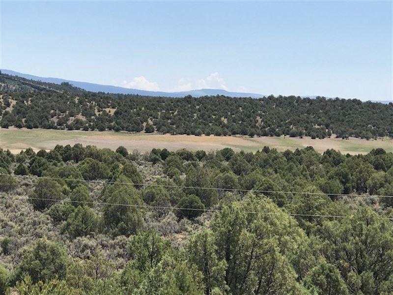 Land El Vado Lake Greatr Views : Tierra Amarilla : Rio Arriba County : New Mexico