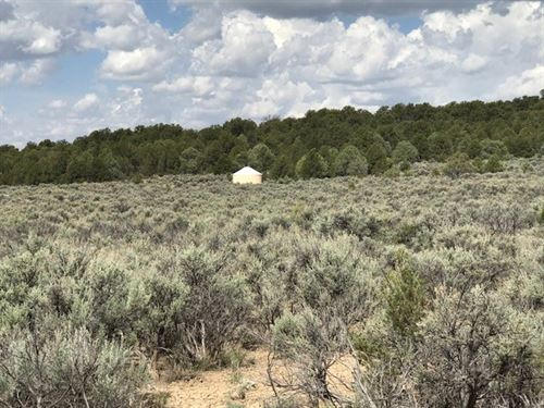 Land Northern NM Minutes From El : Tierra Amarilla : Rio Arriba County : New Mexico