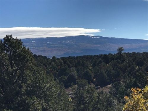 Beautiful Mountain Property Located : Tierra Amarilla : Rio Arriba County : New Mexico