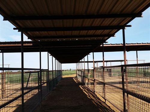 Farm New Mexico Huge Amount Water : Tularosa : Otero County : New Mexico