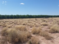 Desert Land in Tularosa, New Mexico : Tularosa : Otero County : New Mexico