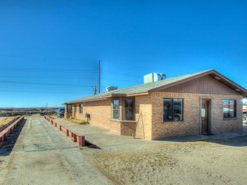 Dairy, Feedlot Row Crop Farm, Vado : Vado : Dona Ana County : New Mexico