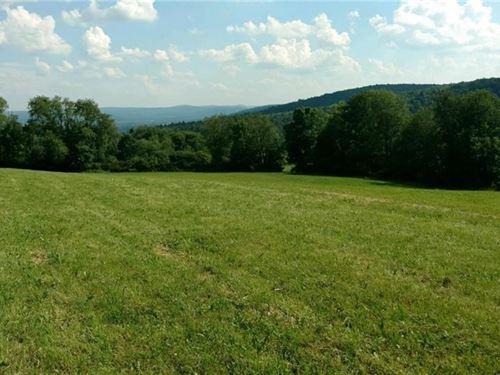 61+ Acres Scenic Land Offering : Bainbridge : Chenango County : New York