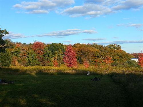 16.6 Acres Quiet Dead End Road : Marathon : Cortland County : New York