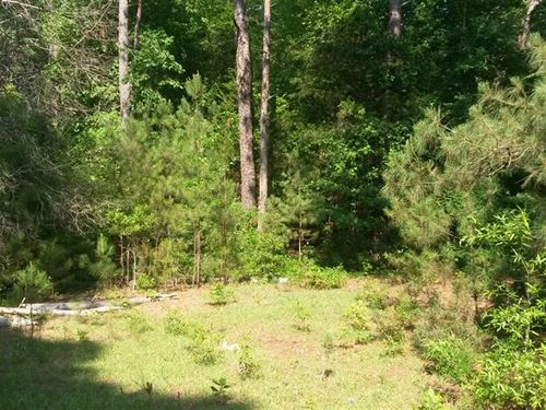Buyers Incentive, $10,000 Reduction : Ridgeway : Fairfield County : South Carolina