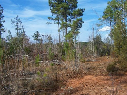 Fairfield County, Sc Land For Sale : Winnsboro : Fairfield County : South Carolina