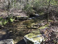 8.57 Acres/wooded/gently Rolling : Pikeville : Bledsoe County : Tennessee