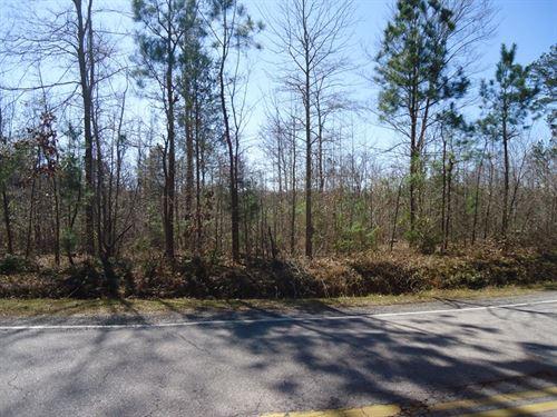 Building Lot Prime Residential Area : Winnsboro : Fairfield County : South Carolina